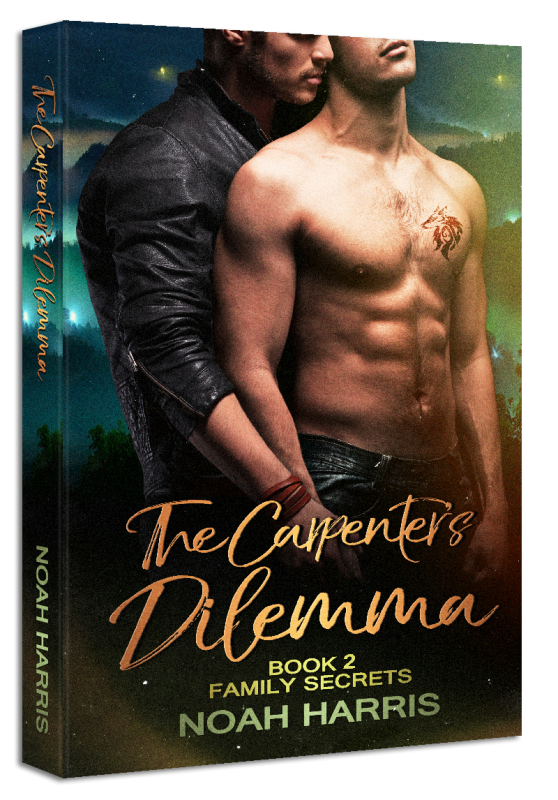 The Carpenter's Dilemma (Family Secrets Book 2)